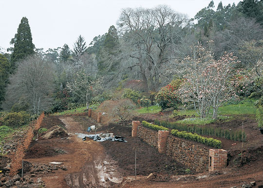 Early work on the gardens